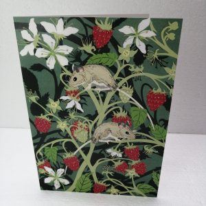 Wood Mice with Raspberries